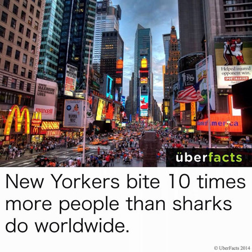 Save Our Planet #66: New Yorkers bite 10 times more people than sharks do worldwide.