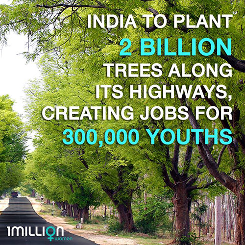 Save Our Planet #67: India to plant 2 billion tress along its highways, creating jobs for 300,000 youths.