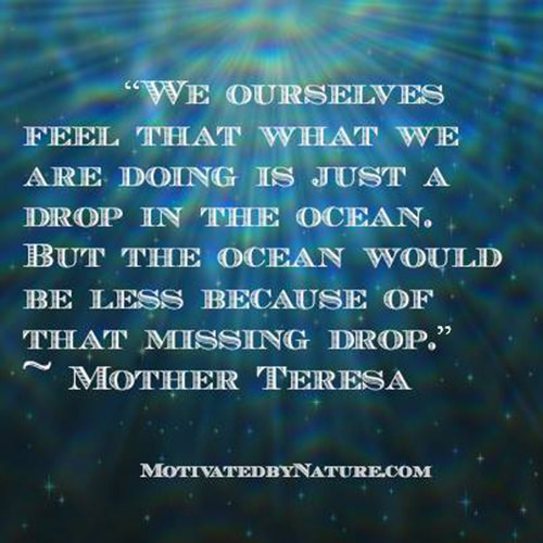 Spread Love #41: We ourselves feel that what we are doing is just a drop in the ocean, but the ocean would be less because of that missing drop.