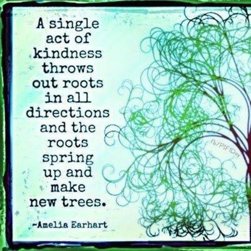 Spread Love #52: A single act of kindness throws out roots in all directions and the roots spring up and make new trees.