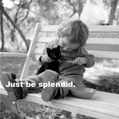 Spread Love #53: Just be splendid.