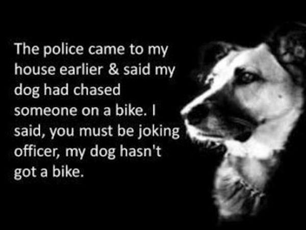 Tickled #199: Funny Police and Dog Joke