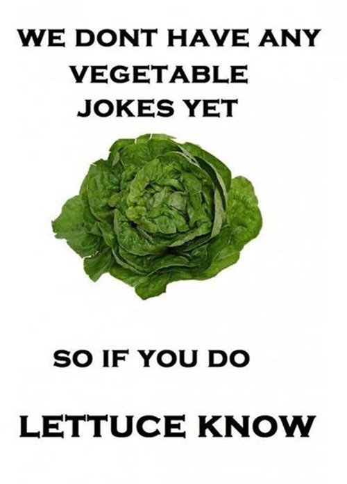 Tickled #206: We don't have any vegetable jokes yet. So if you do, lettuce know.