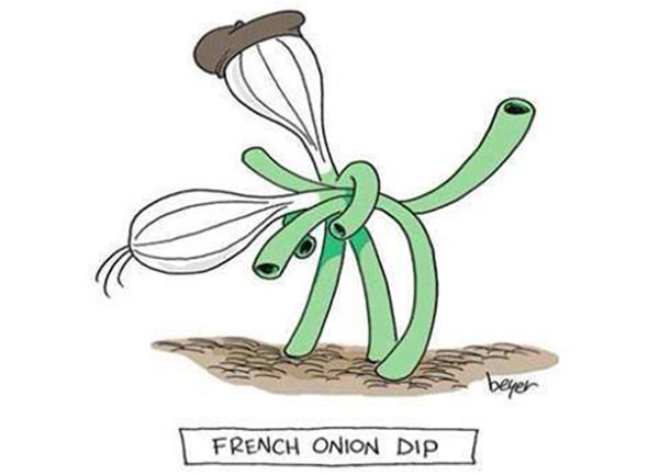 Tickled #211: French Onion Dip