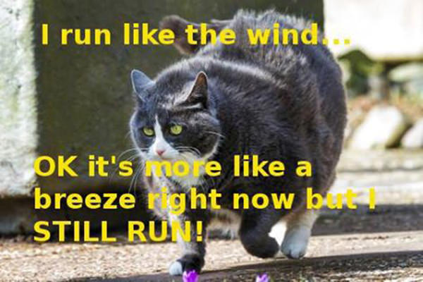 Tickled #214: I run like the wind. Ok, it's more like a breeze right now.