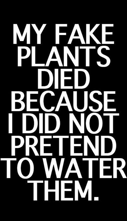 Tickled #256: My fake plants died because I did not pretend to water them.