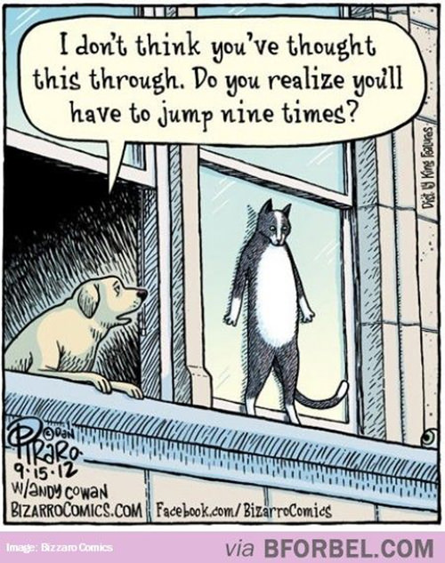 Tickled #268: Cat Joke