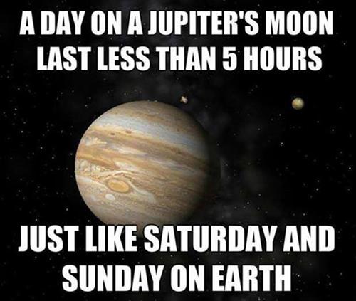 Tickled #323: Weekend Humor