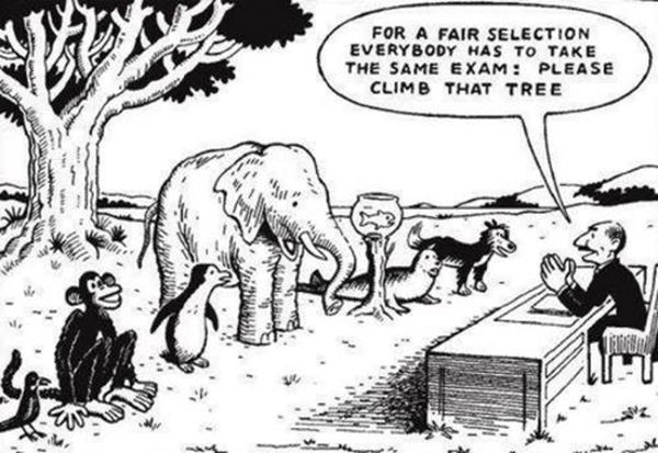 Tickled #449: For a fair selection, everybody has to take the same exam. Please climb that tree.