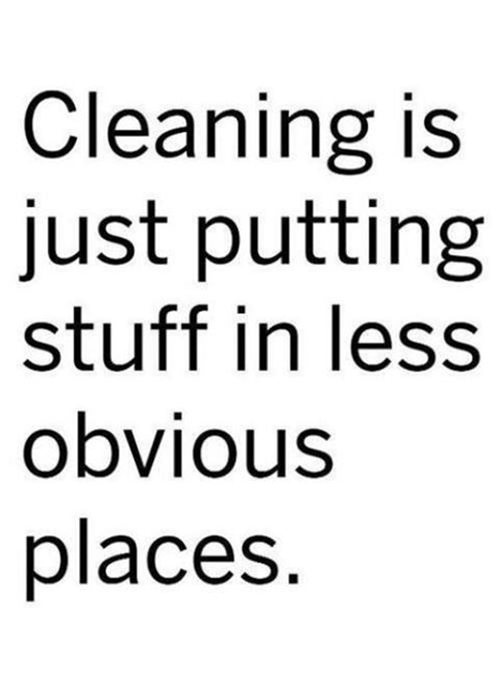 Tickled #463: Cleaning is just putting stuff in less obvious places.