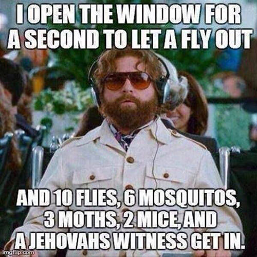 Tickled #503: I open the window for a second to let a fly out and 10 flies, 6 mosquitoes, 3 moths, 2 mice and a Jehovah's witness get in.