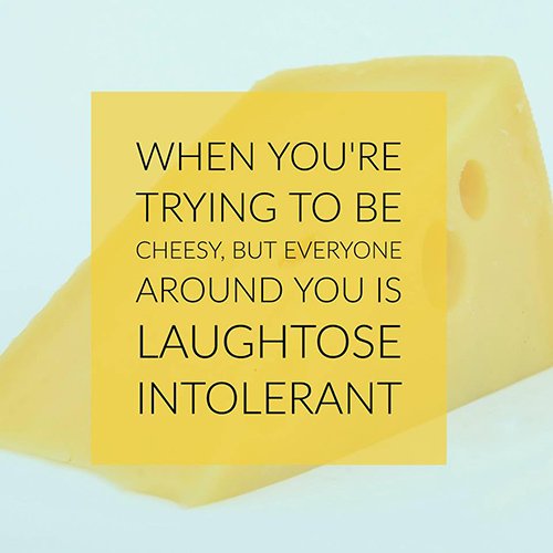 Tickled #688: When you're trying to be cheesy, but everyone around you is Laughtose Intolerant.