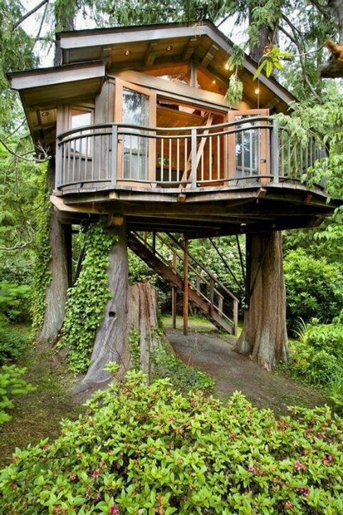 Treehouses #2: