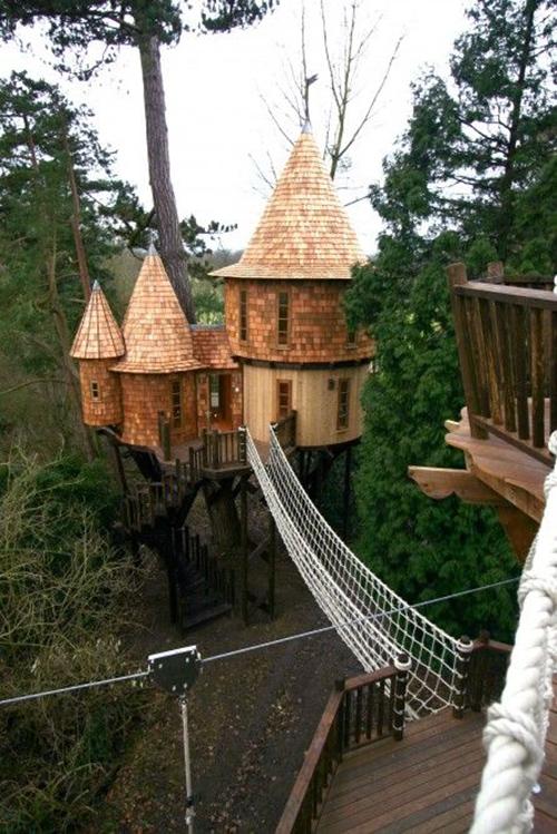 Treehouses #7: