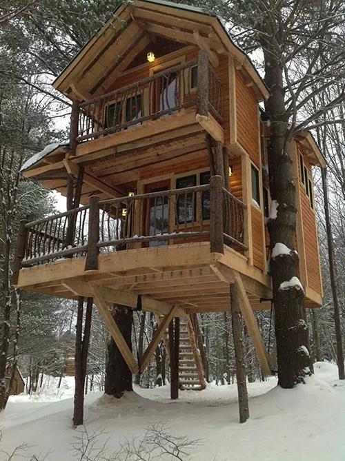 Treehouses #8: