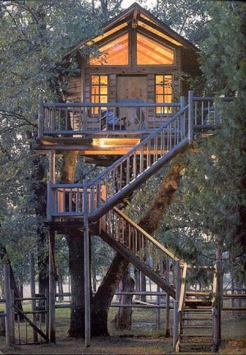 Treehouses #9: