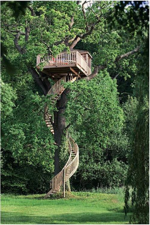 Treehouses #12: