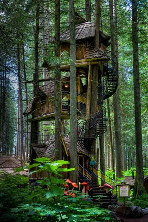 Treehouses #14:
