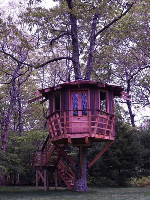 Treehouses #15: