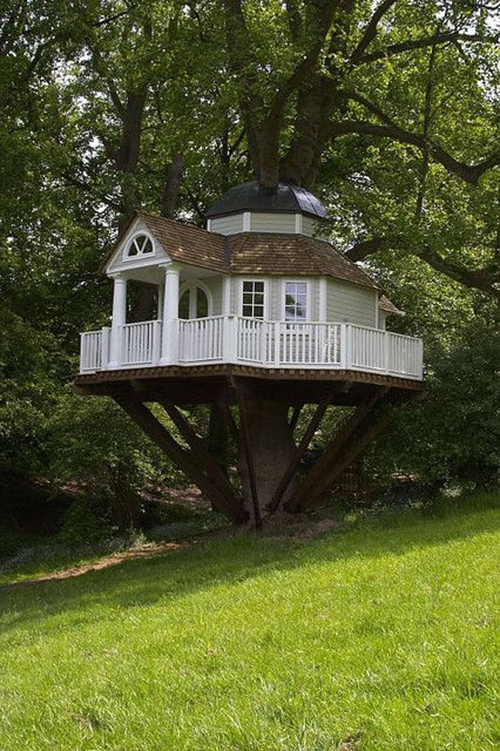 Treehouses #17: