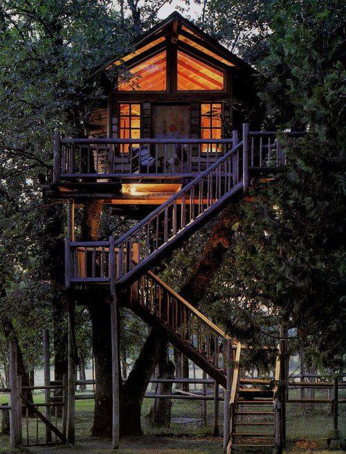 Treehouses #18: