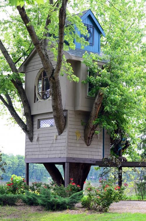 Treehouses #19: