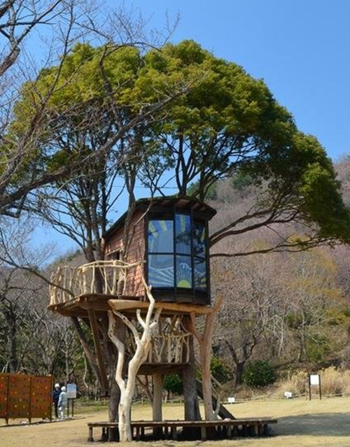 Treehouses #23: