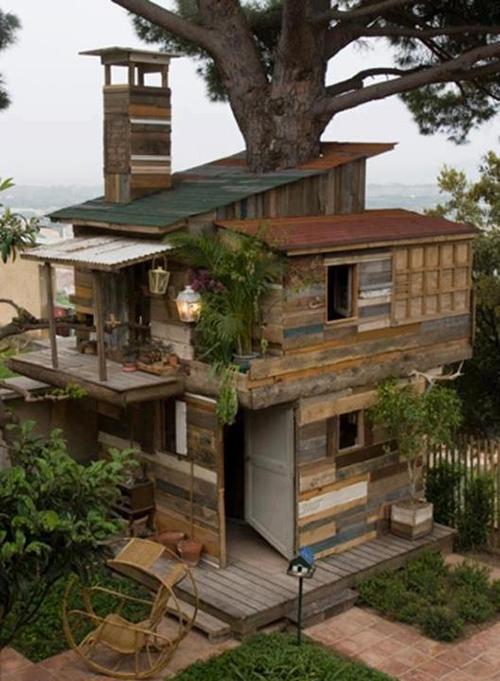 Treehouses #25: