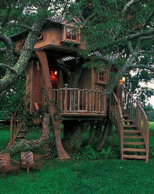 Treehouses #28: