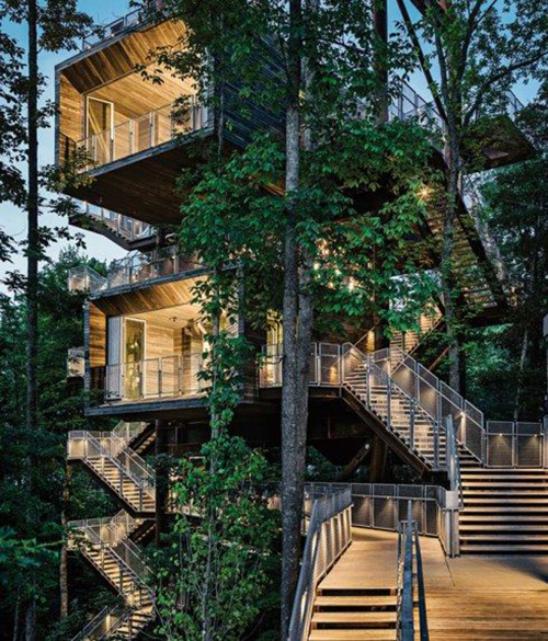 Treehouses #30: