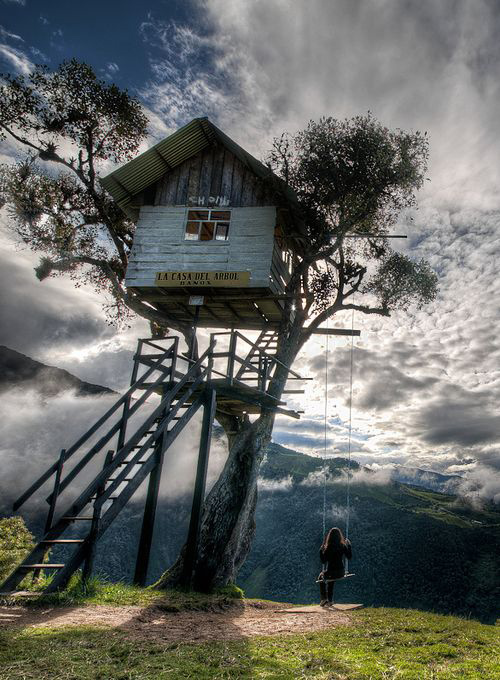 Treehouses #35: