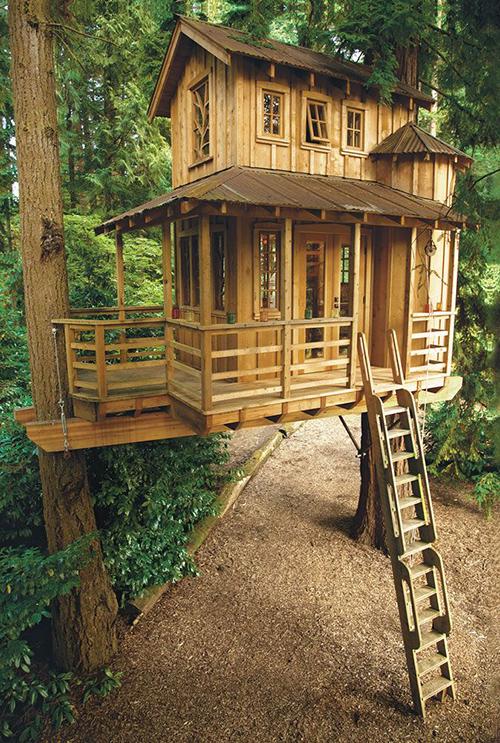 Treehouses #36: