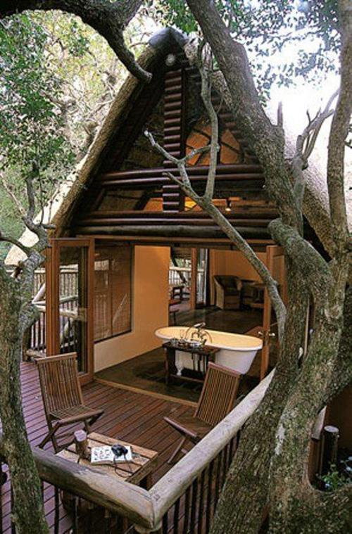 Treehouses #39: