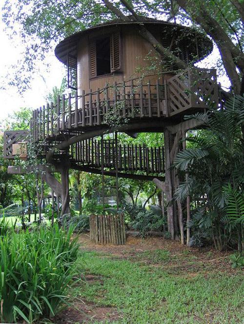 Treehouses #46: