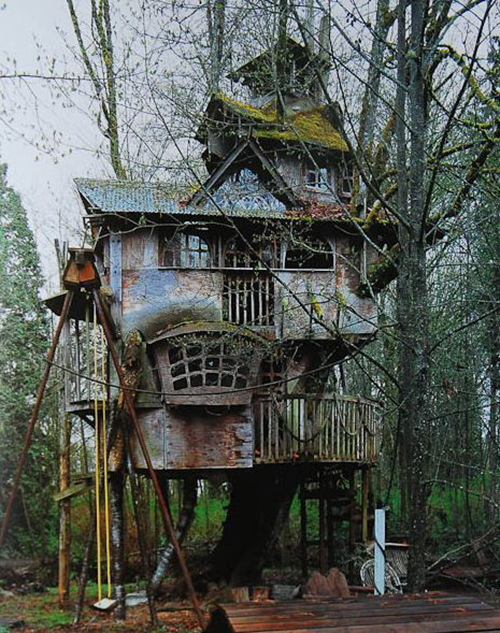 Treehouses #51: