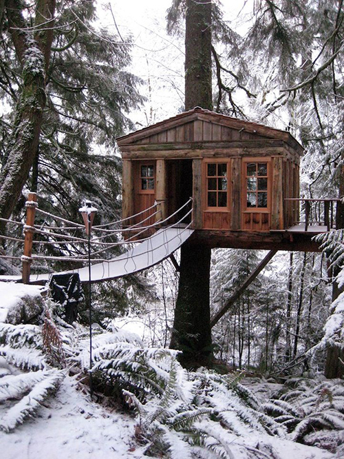 Treehouses #52: