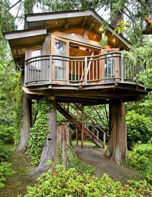 Treehouses #54: