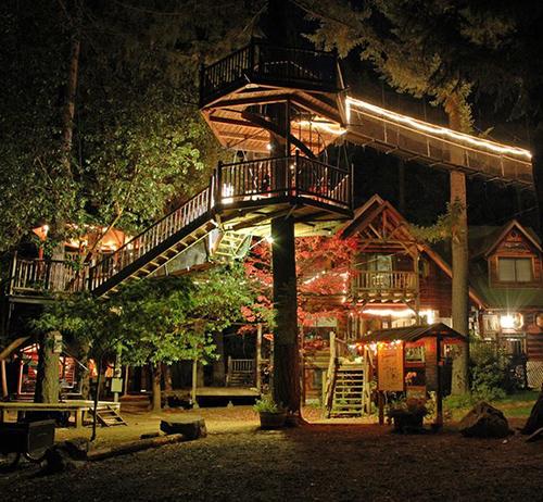 Treehouses #56: