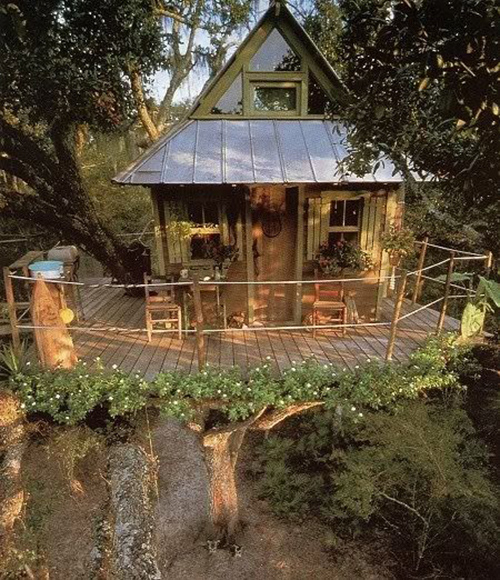 Treehouses #57: