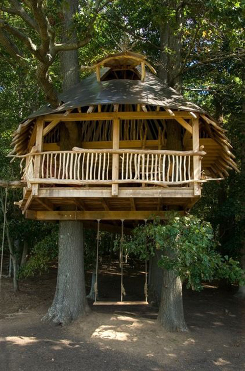 Treehouses #59: